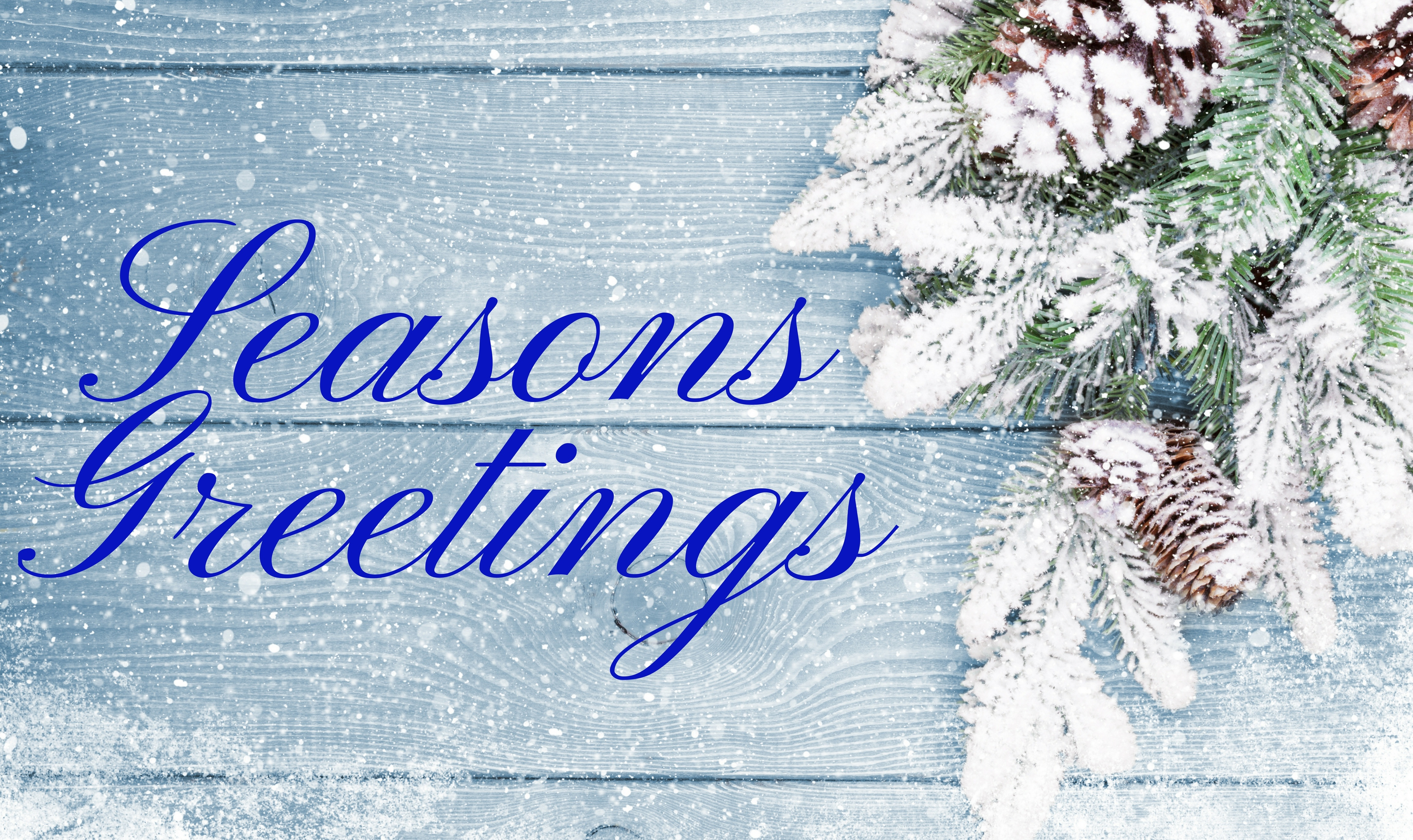 Happy Holidays from The Anisa Group